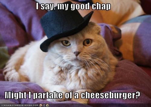 Cheezburger Image 5374258176