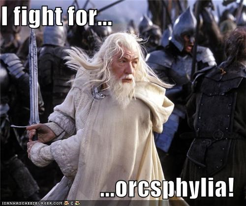Cheezburger Image 5374597120