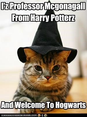 I'z Professor Mcgonagall From Harry Potterz And Welcome To Hogwarts