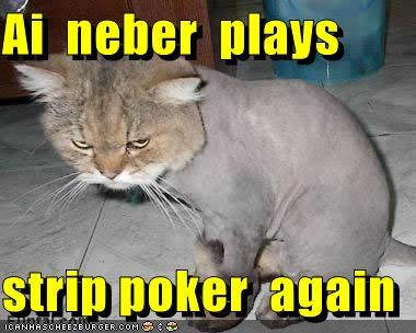 again,caption,captioned,cat,do not want,I,never,play,poker,promise,shaved,strip,strip poker