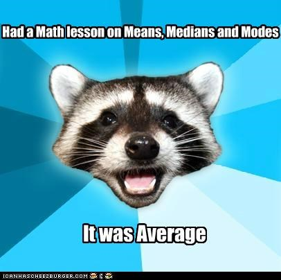 average jokes Lame Pun Coon math mean numbers