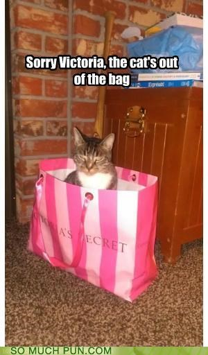 bag,cat,cliché,double meaning,idiom,out,secret,Victoria,victorias secret