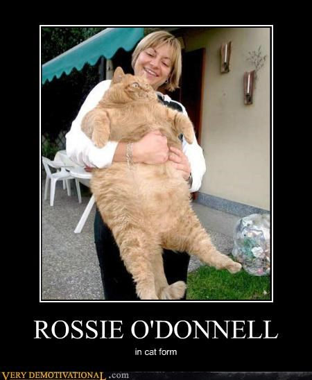 ROSSIE O'DONNELL in cat form