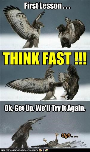 First Lesson . . . THINK FAST !!! Ok, Get Up. We'll Try It Again. Ugh . . .