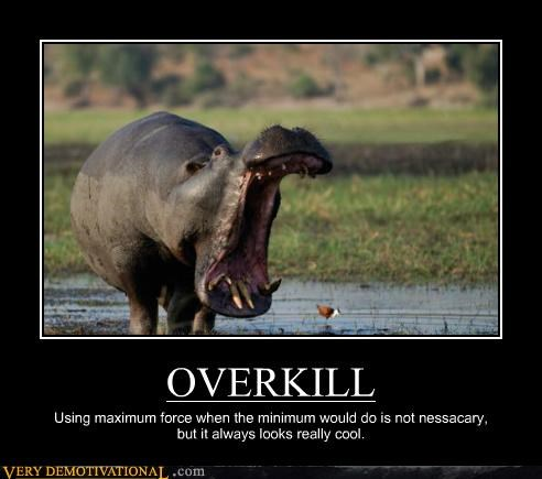 animals cool hilarious hippo overkill - 5377785088