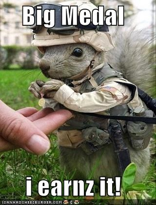 adorable,animals,armed services,army,awesome,awww,clothing,medal,military,squirrel,thank you