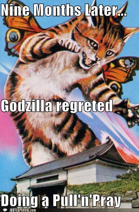 caption contest catterfly godzilla oops - 5378644992