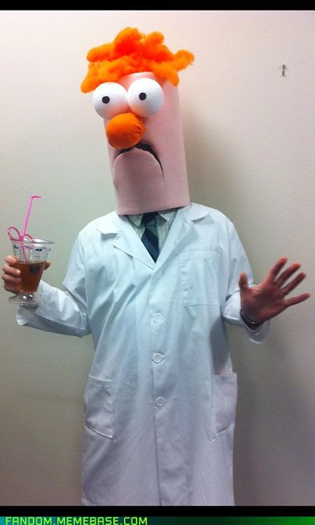 beaker best of week ceiling cat costume halloween Memes - 5378776832