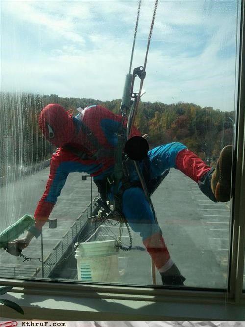 costume,halloween,job,Spider-Man,superheroes,window washer