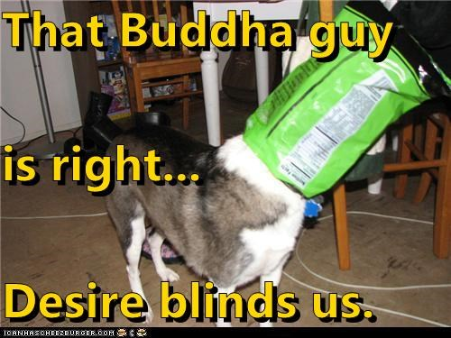 That Buddha guy is right... Desire blinds us.