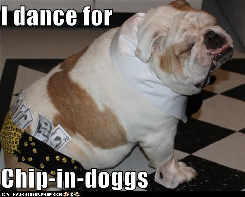 bulldog chippendales classy dance male stripper money stripper