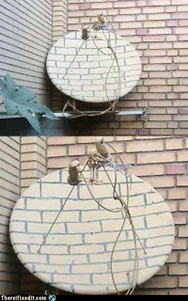 camouflage paint satellite dish - 5379554048
