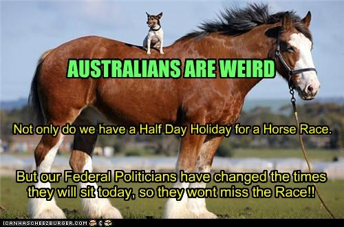 AUSTRALIANS ARE WEIRD Not only do we have a Half Day Holiday for a Horse Race. But our Federal Politicians have changed the times they will sit today, so they wont miss the Race!!