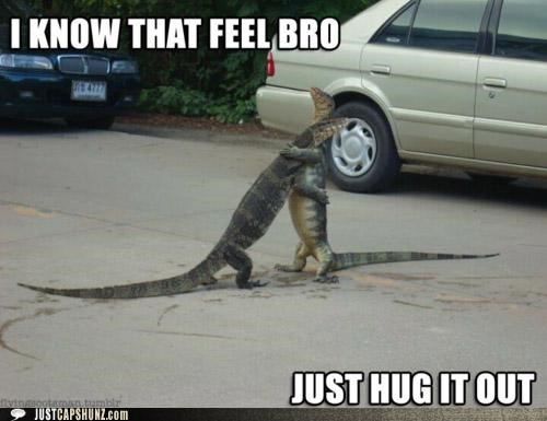best friends bffl bro friends hug hugging i know that feel lizards