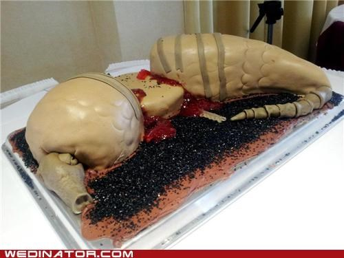 armadillo Blood cake dead gross morbid roadkill - 5382226432