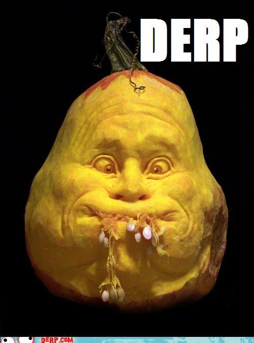 derp,halloween,halloween 2011,jack o lanterns,pumpkins