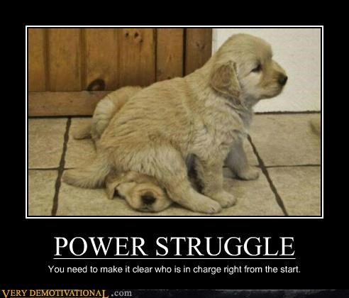 POWER STRUGGLE You need to make it clear who is in charge right from the start.