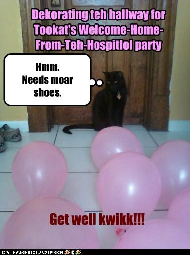 Dekorating teh hallway for Tookat's Welcome-Home- From-Teh-Hospitlol party Hmm. Needs moar shoes. Get well kwikk!!!