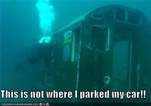 diver scuba diver swimming this-isnt-where-i-parked-my-car train