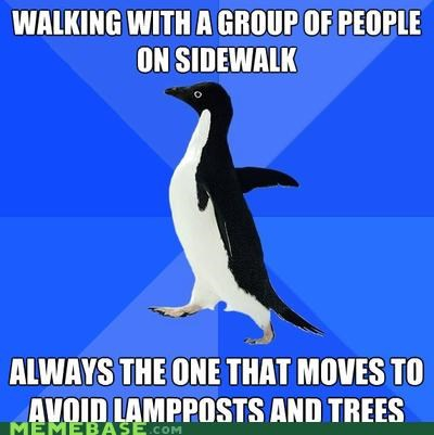 lampost,obstacle course,sidewalk,socially awkward penguin,trees,trekkin
