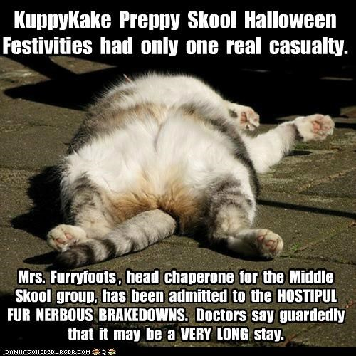 KuppyKake Preppy Skool Halloween Festivities had only one real casualty. Mrs. Furryfoots , head chaperone for the Middle Skool group, has been admitted to the HOSTIPUL FUR NERBOUS BRAKEDOWNS. Doctors say guardedly that it may be a VERY LONG stay.
