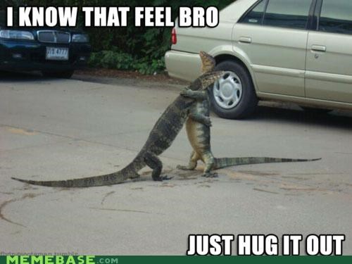 animals animemes bro feel hug lizards Memes what - 5383156992