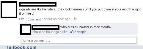 fire hamsters mouth pyro why