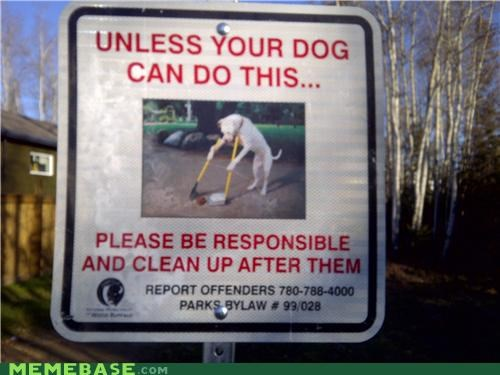 dogs IRL pooptimes sign - 5383726336