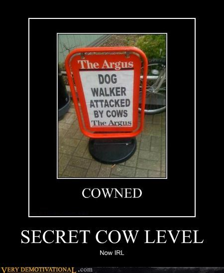 cow hilarious IRL secret video games - 5385259264
