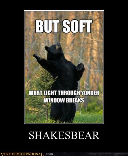 animals,bear,hilarious,lol,shakespear