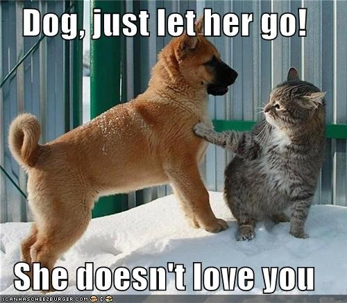Dog, just let her go! She doesn't love you