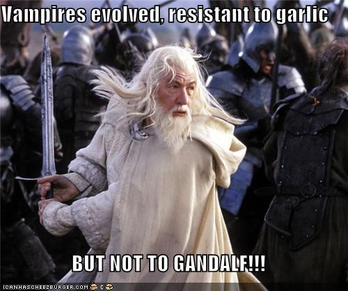 Cheezburger Image 5386608384