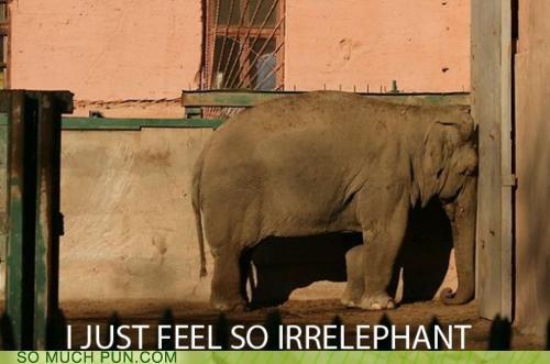 elephant emo Hall of Fame literalism portmanteau similar sounding suffix - 5386715392
