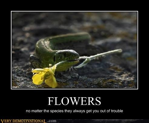 FLOWERS no matter the species they always get you out of trouble
