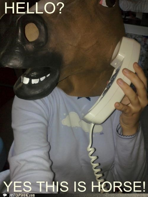 hello,horse,phone,phone call,telephone,yes this is dog,yes this is horse