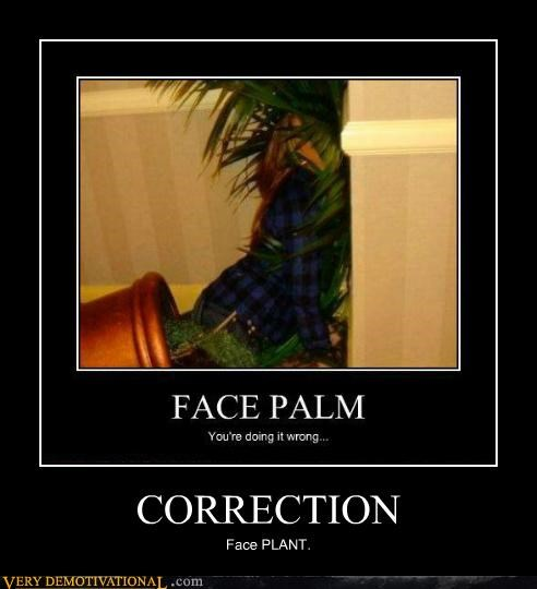 correction face plant facepalm hilarious wtf - 5387693568
