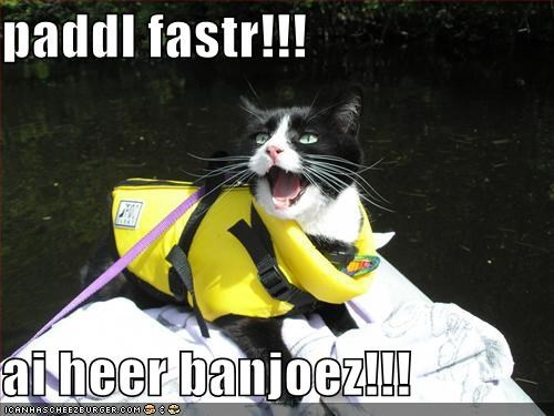 banjoes,best of the week,caption,captioned,cat,faster,Hall of Fame,hear,I,lifejacket,lolwut,paddle