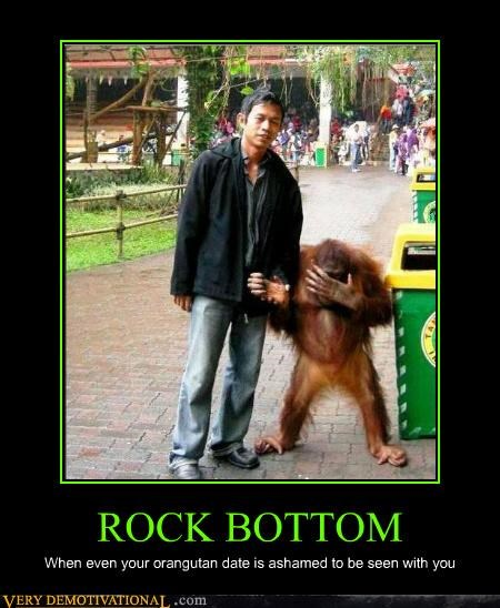 animals,date,hilarious,orangutan,rock bottom