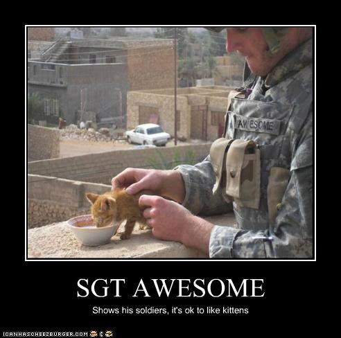SGT AWESOME Shows his soldiers, it's ok to like kittens