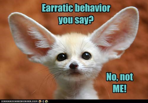 Earratic behavior you say? No, not ME!