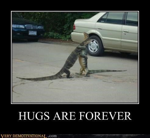 animals hilarious hugs lizards - 5389916928