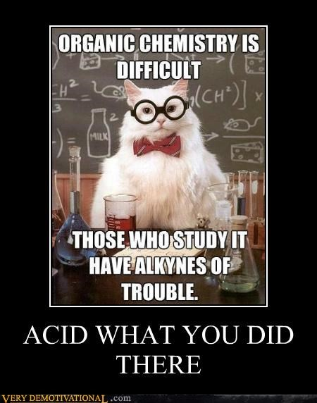 acid,chemistry cat,hilarious,pun