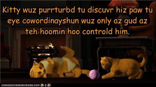 Cheezburger Image 5390813440