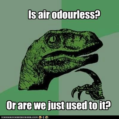 Is air odourless? Or are we just used to it?