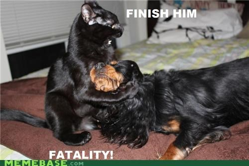 come over here fatality finish him Memes Mortal Kombat - 5392020224