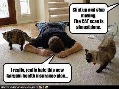 bargain caption captioned cat cat scan Cats do not want hate health insurance new plan pun scan - 5392646912