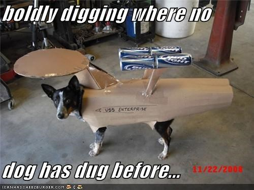 boldly digging where no dog has dug before...
