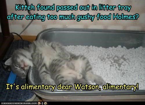 Kitteh found passed out in litter tray after eating too much gushy food Holmes? It's alimentary dear Watson, alimentary!