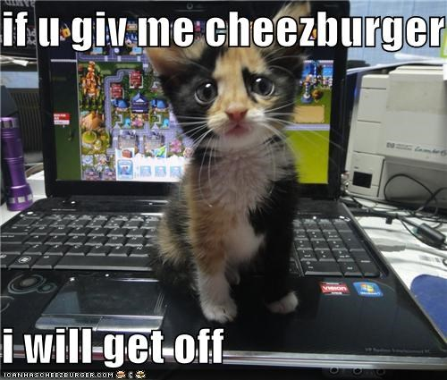Cheezburger Image 5393710848