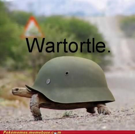 amazing best of week helmet IRL turtle war wartortle - 5394027264